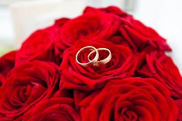 Eheringe auf Rosen